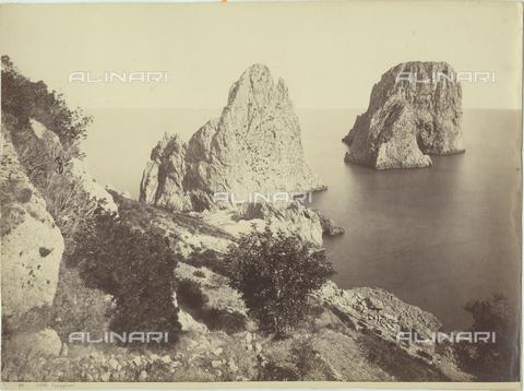 FVQ-F-033573-0000 - The faraglioni of Capri - Data dello scatto: 1870-1880 - Archivi Alinari, Firenze