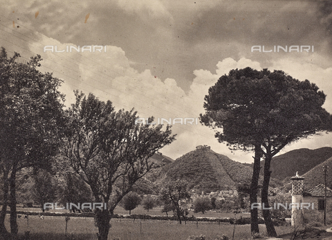 FVQ-F-038117-0000 - Landscape in Volturara Irpina - Date of photography: 1940-1950 - Fratelli Alinari Museum Collections, Florence