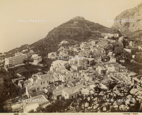 FVQ-F-043872-0000 - View of Capri - Data dello scatto: 1870-1880 - Archivi Alinari, Firenze