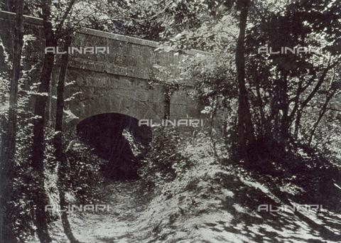 FVQ-F-045736-0000 - Piccolo ponte in muratura su un ruscello in secca, immerso nella vegetazione di un bosco - Data dello scatto: 1920 - 1930 ca. - Archivi Alinari, Firenze