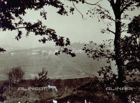 FVQ-F-045737-0000 - Un paese in collina è ripreso a distanza, inquadrato dai rami di due alberi - Data dello scatto: 1920 - 1930 ca. - Archivi Alinari, Firenze