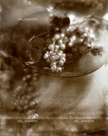 FVQ-F-045749-0000 - Natura morta pittorialista con frutta. Nella ripresa dall'alto si intravede una fruttiera di vetro contenente grappoli d'uva - Data dello scatto: 1934 - Archivi Alinari, Firenze