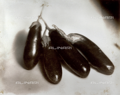 FVQ-F-045752-0000 - Natura morta con melanzane - Data dello scatto: 1934 - Archivi Alinari, Firenze