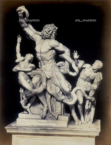 FVQ-F-050358-0000 - Laocoon, Vatican Museums, Pio Clementino Museum, State of Vatican City, Rome - Data dello scatto: 1855 ca. - Archivi Alinari, Firenze