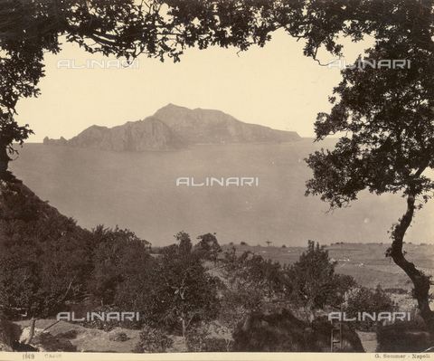 FVQ-F-065556-0000 - The island of Capri - Data dello scatto: 1870-1880 - Archivi Alinari, Firenze