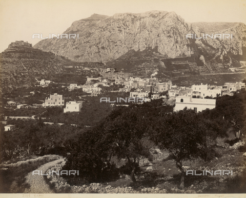FVQ-F-075015-0000 - View of Capri - Data dello scatto: 1870-1880 - Archivi Alinari, Firenze