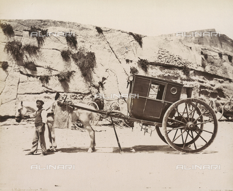 FVQ-F-078333-0000 - A Maltese carriage - Data dello scatto: 1860-1870 ca. - Archivi Alinari, Firenze
