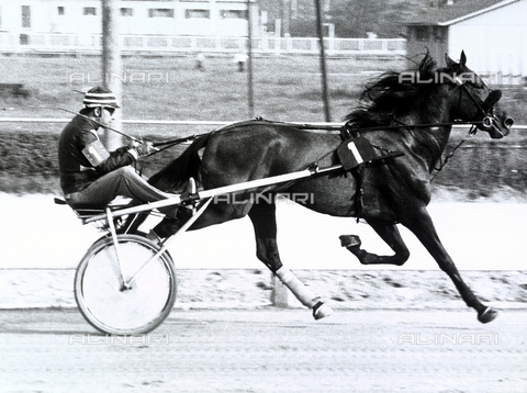 FVQ-F-099657-0000 - Man in a horse-drawn gig during a trotting race