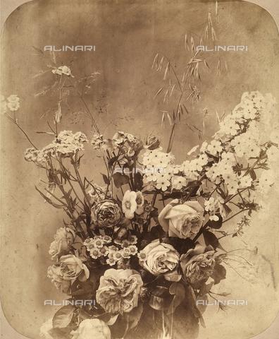 FVQ-F-117987-0000 - Composizione di fiori - Data dello scatto: 1860 ca. - Archivi Alinari, Firenze
