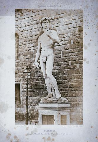 FVQ-F-134622-0000 - The David of Michelangelo - Data dello scatto: 1851 ca. - Archivi Alinari, Firenze