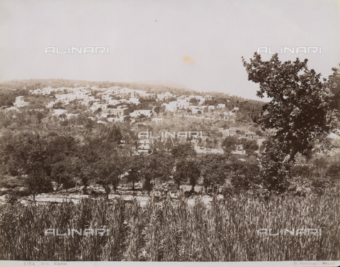 FVQ-F-138428-0000 - View of Anacapri - Data dello scatto: 1870-1880 - Archivi Alinari, Firenze