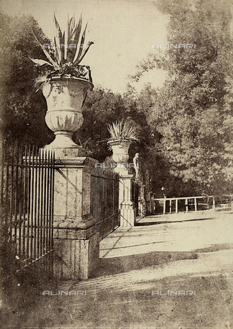 FVQ-F-141082-0000 - A tree-lined road of the park of Villa Borghese in Rome - Data dello scatto: 1852 - 1854 - Archivi Alinari, Firenze