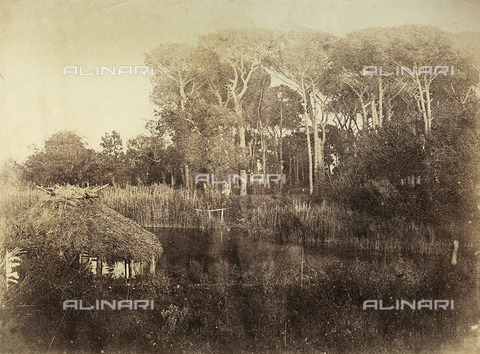 FVQ-F-141091-0000 - Lake and small park of Villa Borghese, Rome - Data dello scatto: 1855-1860 - Archivi Alinari, Firenze