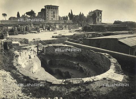 FVQ-F-158768-0000 - Vasca del Palazzo dei Flavi sul Palatino. Roma - Archivi Alinari, Firenze