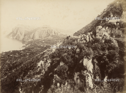 FVQ-F-159735-0000 - View of Capri - Data dello scatto: 1870-1880 - Archivi Alinari, Firenze