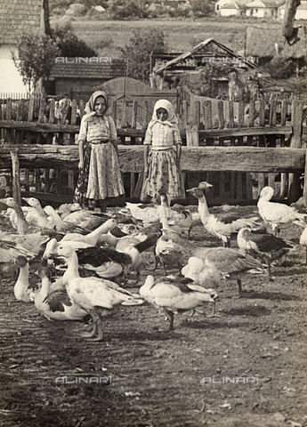 FVQ-F-169843-0000 - Young Hungarian girls with a number of geese