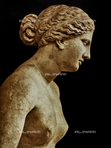 FVQ-F-197831-0000 - Detail of Venus or Aphrodite Cnidia, copy of Praxiteles, Museo Pio Clementino, Vatican Museums, Vatican City - Data dello scatto: 1900 ca. - Archivi Alinari, Firenze