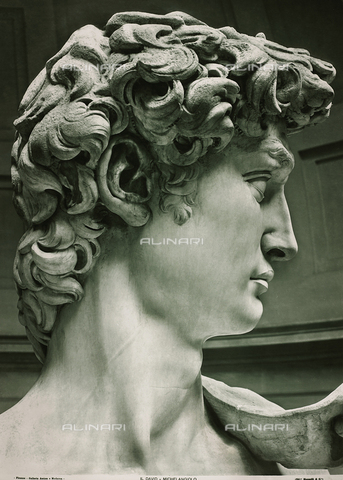 FVQ-F-198242-0000 - David, Michelangelo Buonarroti, The Accademy Gallery, Florence