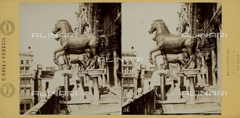 FVQ-F-200115-0000 - Side view of the gilded bronze horses on the façade of the Basilica of San Marco in Venice, now in the Museum of San Marco - Data dello scatto: 1865-1875 - Archivi Alinari, Firenze