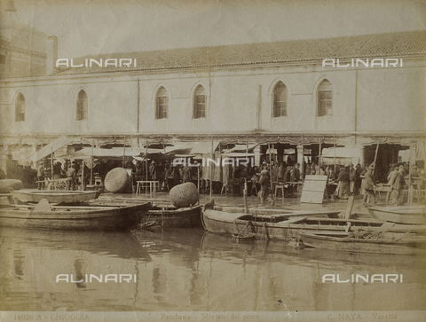 FVQ-F-205927-0000 - The fish market in Chioggia - Data dello scatto: 1865-1875 - Archivi Alinari, Firenze