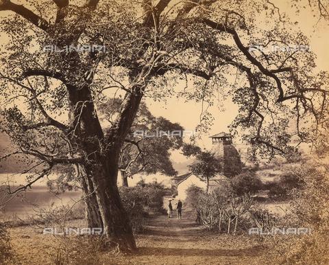 FVQ-F-206763-0000 - Paesaggio fluviale indiano - Data dello scatto: 18630-1870 - Archivi Alinari, Firenze