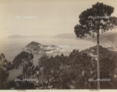 FVQ-F-211069-0000 - Elevated view of the town of Sestri Levante, Genoa - Data dello scatto: 1890 ca. - Archivi Alinari, Firenze