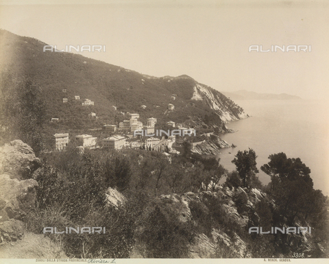 FVQ-F-211070-0000 - Elevated view of the town of Zoagli, Genoa - Data dello scatto: 1890 ca. - Archivi Alinari, Firenze
