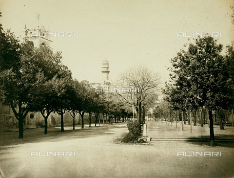 FVQ-F-212645-0000 - Public Garden in Genova - Data dello scatto: 1890 ca. - Archivi Alinari, Firenze