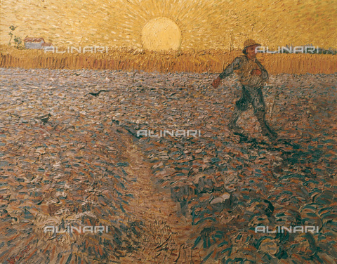 GRC-F-025387-0000 - Seminatore, olio su tela, Vincent van Gogh (1853-1890) - Granger, NYC /Archivi Alinari