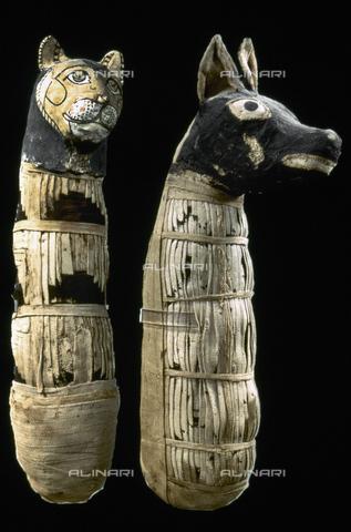 GRC-F-040135-0000 - Mummie di un gatto e di un cane, lino e tela dipinti, I sec. a. C., Egitto - Granger, NYC /Archivi Alinari