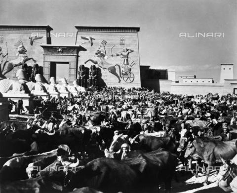 """GRC-F-123188-0000 - Folla di comparse con buoi nella piazza del viale delle sfingi di gesso, scena allestita negli studi della Paramount durante le riprese del film muto """"I dieci comandamenti  (The Ten Commandments)"""" diretto da Cecil B. DeMille - Data dello scatto: 1923 - Granger, NYC /Archivi Alinari"""