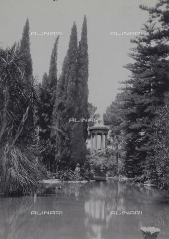 GWA-F-000106-0000 - Elegy - Data dello scatto: 1900 ca. - Archivi Alinari, Firenze