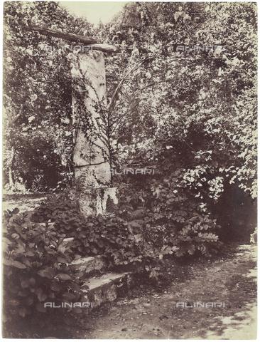 GWA-F-000108-0000 - Garden - Data dello scatto: 1900 ca. - Archivi Alinari, Firenze