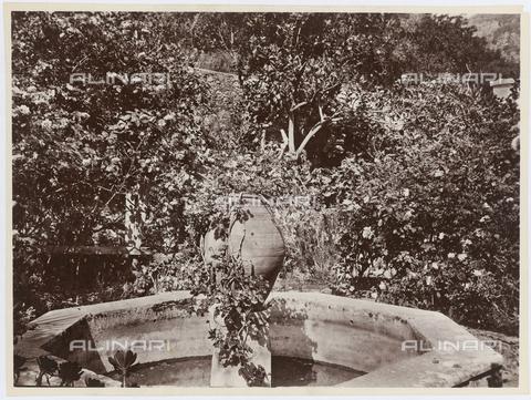 GWA-F-000109-0000 - Garden fountain home Von Gloeden, Taormina - Data dello scatto: 1910 ca. - Archivi Alinari, Firenze