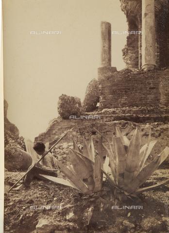 GWA-F-000219-0000 - Taormina. Greek theater - Data dello scatto: 1900 ca. - Archivi Alinari, Firenze