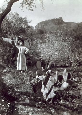 GWA-F-000690-0000 - Little working class girl portrayed in a countryside corner of Sicily, characterized by fichi d'India and flowered small trees. The nice little girl, in umili traditional clothes, is posing holding an anfora on her head - Data dello scatto: 1895-1905 ca. - Archivi Alinari, Firenze