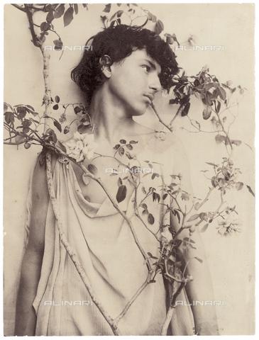 GWA-F-000706-0000 - Portrait of a boy with rose branch - Data dello scatto: 1900 ca. - Archivi Alinari, Firenze