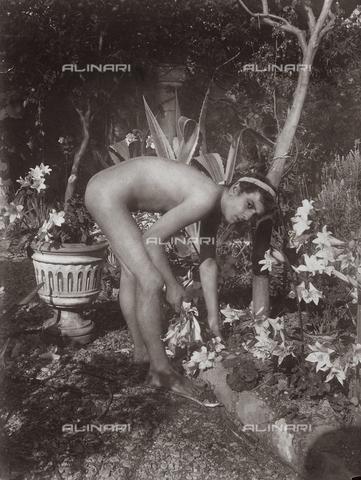 GWA-F-000947-0000 - Male nude - Data dello scatto: 1900 ca. - Archivi Alinari, Firenze
