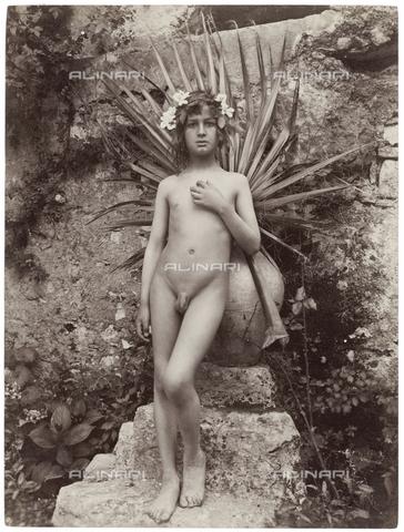 GWA-F-000951-0000 - Young nude with a palm - Data dello scatto: 1900 ca. - Archivi Alinari, Firenze