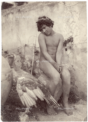 GWA-F-000958-0000 - Male nude with a turkey - Data dello scatto: 1900 ca. - Archivi Alinari, Firenze