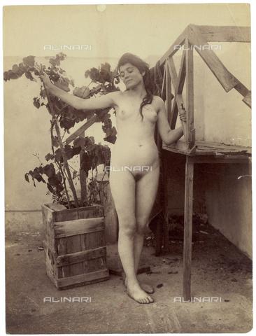 GWA-F-000963-0000 - Female nude - Data dello scatto: 1900 ca. - Archivi Alinari, Firenze