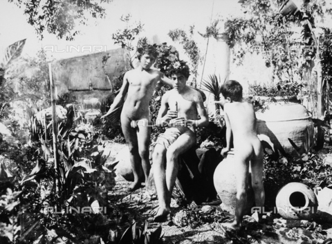 GWN-F-000106-0000 - Adolescent boys pose nude in a garden, evoking a scene of ancient Greece - Data dello scatto: 1895 - 1905 - Archivi Alinari, Firenze