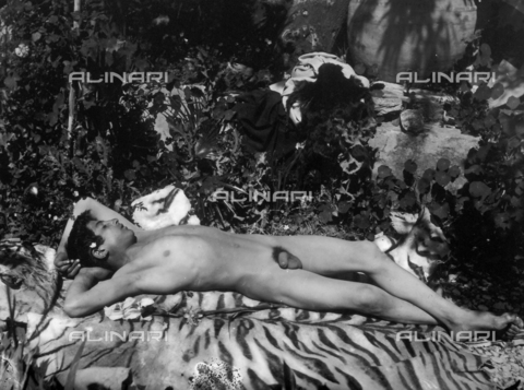 GWN-F-000522-0000 - Nude young man, in a sensual pose, reclining on an animal skin - Data dello scatto: 1895 - 1905 - Archivi Alinari, Firenze