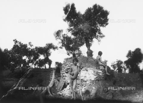 GWN-F-001117-0000 - Arcadian-pastoral scene set in an olive grove of Taormina - Data dello scatto: 1895 - 1905 - Archivi Alinari, Firenze