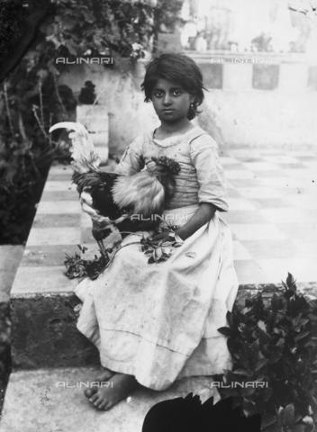 GWN-F-002414-0000 - Portrait of a small Sicilian girl with a rooster - Data dello scatto: 1895 - 1905 - Archivi Alinari, Firenze