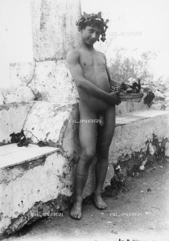 GWN-F-003045-0000 - Adolescent, holding a grape basket, poses as Bacchus - Data dello scatto: 1895 - 1905 - Archivi Alinari, Firenze