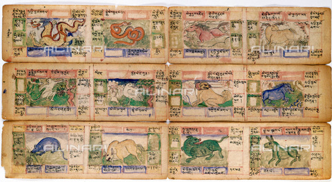 HIP-S-000115-5974 - The twelve Chinese astrological signs, miniatures of a Tibetan manuscript from the late 18th century - Ann Ronan Picture Library / Heritage Images /Alinari Archives, Florence
