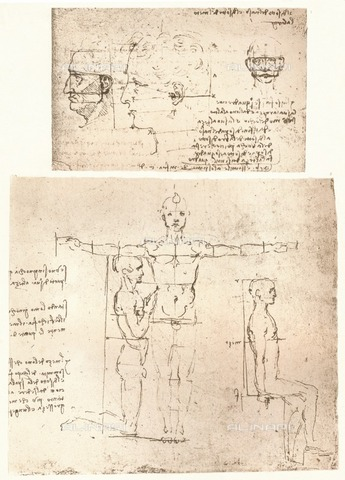"HIP-S-000262-2699 - Two drawings illustrating the theory of the proportions of the human figure (RL 19132r) by Leonardo da Vinci (1452-1519) and preserved in the Royal Library of Windsor Castle, from ""The Literary Works of Leonardo Da Vinci"" by Jean Paul Richter (London, 1883) - The Print Collector / Heritage Images /Alinari Archives, Florence"