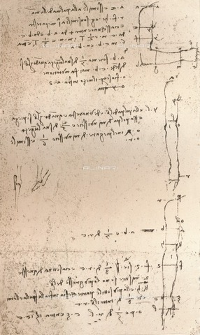 "HIP-S-000262-2710 - Study of the proportions of the length of an arm (RCIN 919136) by Leonardo da Vinci (1452-1519) and preserved in the Royal Library of Windsor Castle, from ""The Literary Works of Leonardo Da Vinci"" by Jean Paul Richter (London, 1883) - The Print Collector / Heritage Images /Alinari Archives, Florence"
