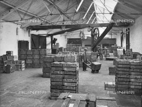 HIP-S-000266-7881 - Goods shed, West Lancashire Station, Fishergate Hill, Preston, Lancashire, 1927. The interior of the Cantrell and Cochrane depot with an employee moving a crate across the store. Photographed in 1927 for the London, Midland and Scottish Railway. The station was also known as Fishergate Hill Station. With the exception of a few infrequent services, the station was closed to passengers in 1900 but it remained open to goods traffic until 1965. It was later demolished and the site is now Colman Court - Data dello scatto: 1927 - Historic England Archive / Heritage Images /Alinari Archives, Florence